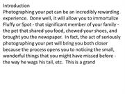 An_Introduction_to_Pet_Photography