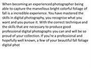 Capturing_Colourful_Fall_Foliage_With_Your_Digital_Photography
