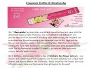 Corporate Profile of Liliesinatube