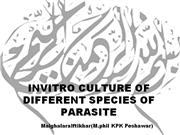 INVITRO CULTURE OF DIFFERENT SPECIES OF PARASITES