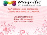 sap sd online training in canada usa india singapore
