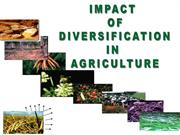 impact of diversification in agriculture