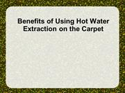 Benefits of Using Hot Water Extraction on the Carpet