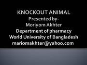 knockout animal technology