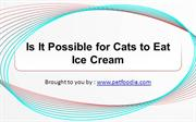 Is It Possible for Cats to Eat Ice Cream?