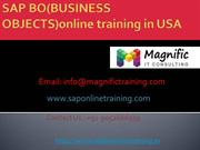 sap bo(business objects) online training usa