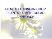 GENE STAKING IN CROP PLANTS - A MOLECULAR APPROACH
