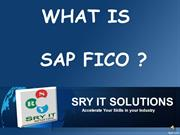 SAP FICO ONLINE TRAINING | FICO PLACEMENT