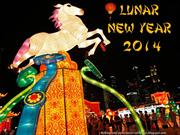 2014 Lunar New Year  (part 2)