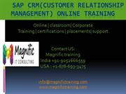 sap crm training IT experts online