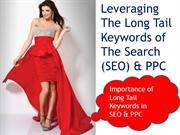 Importance of Long Tail Keywords in SEO & PPC - EBriks Infotech