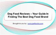 Dog Food Reviews – Your Guide In Finding The Best Dog Food Brand