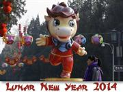 2014 Lunar New year (part 3)