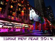 2014 Lunar New year (part 4)