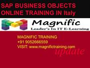 sap bo(business objects) online training-New york