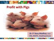 Profit with pigs
