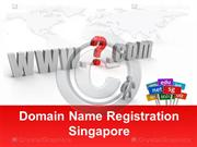 Domain Name Registration in Singapore