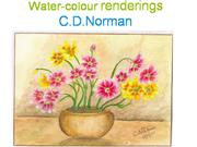 CD Norman's Water-colour renderings