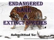 Endangered ,Rare & Extinct Species