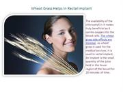 Wheat Grass Helps In Rectal Implant