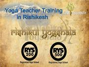 Yoga Teacher Training in Rishikesh, Yoga Teacher Training India