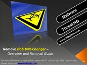 Remove Zlob.DNS Changer - Overview