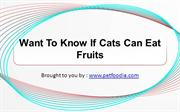 Want To Know If Cats Can Eat Fruits