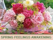 SPRING FEELINGS AWAKENING-2