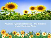 Advanced Hydroponic Nutrients - The Backbone of your Gardening Plants