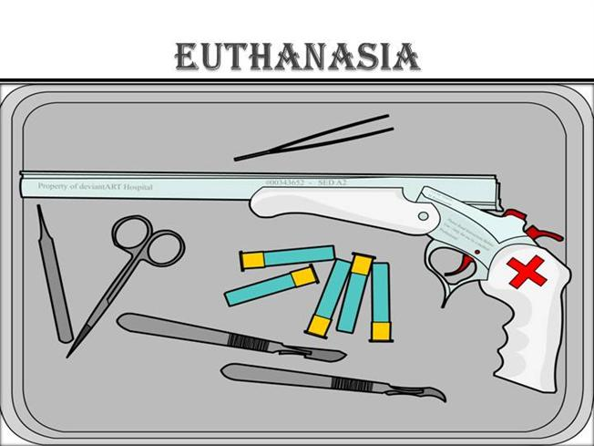 Euthanasia case studies powerpoint
