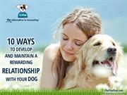 10 Ways to Develop and Maintain a Rewarding Relationship with Your Dog