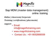 sap master data management mdm operations