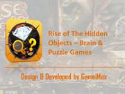 Rice of The Hidden Objects