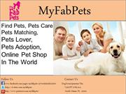 Find Pets, Pets lover & pets matching