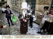 Purim Celebrations 2014