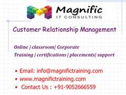 sales force customer relationship management(crm)online training