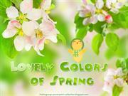 Lovely Colors of Spring (4)