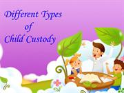 Different Types of Child Custody Which is Describing by Lawyers