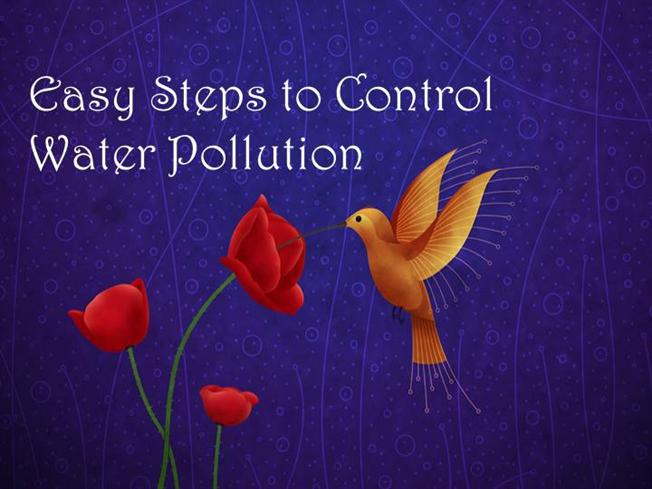 Easy Steps to Control Water Pollution |authorSTREAM