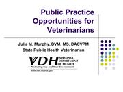 Public Practice Opportunities for Vetterinarians