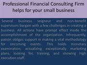 Professional Financial Consulting Firm helps for your small business