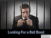 Looking for Bail Bond in N.Y.S: David Jakab Bail Bond