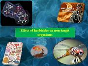 Effect of herbicides on non-target  organisms