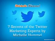 7 Secrets of the Twitter Marketing Experts