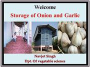 Storage of Onion and Garlic : An Overview