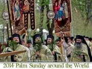 2014 Palm Sunday around the World