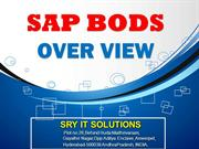 SAP BODS ONLINE TRAINING | BODS COURSE DETAILS | SRY IT SOLUTIONS