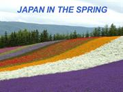 Japan in Floare (Japan in the Spring)