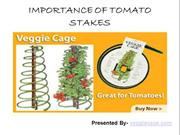 Proper Uses Of Tomato Stakes