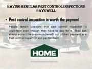Having regular Pest control inspections pays well